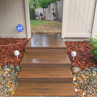 Trex decking and Steps